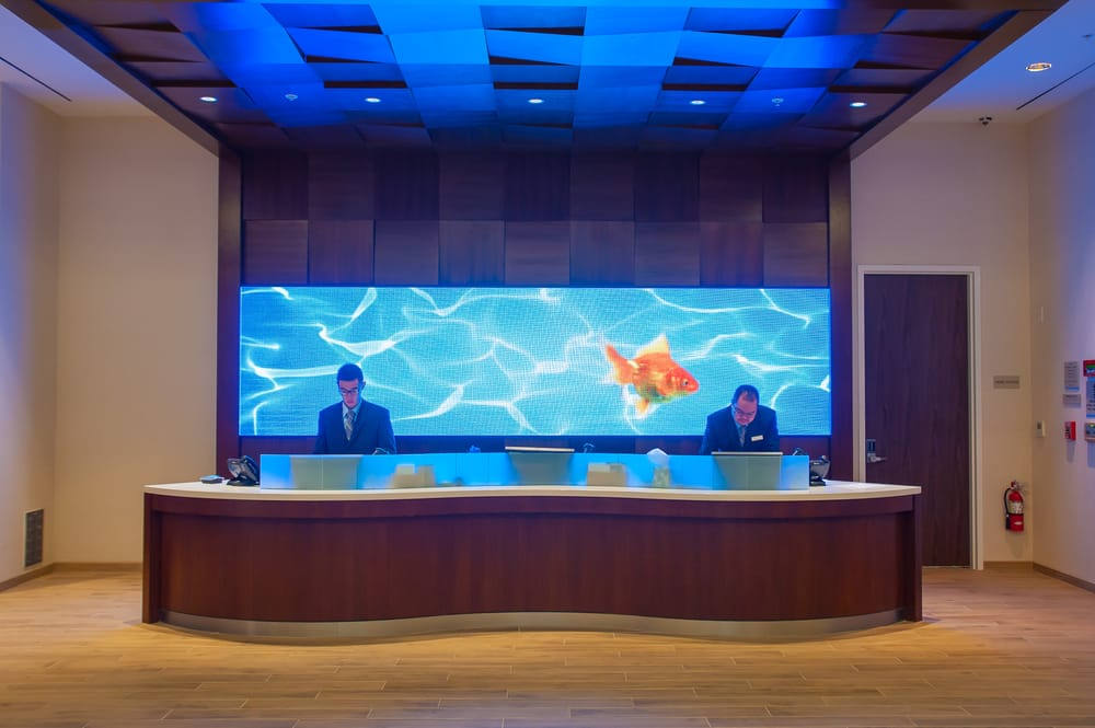 Front desk and virtual fish tank yelp for Fish tank desk