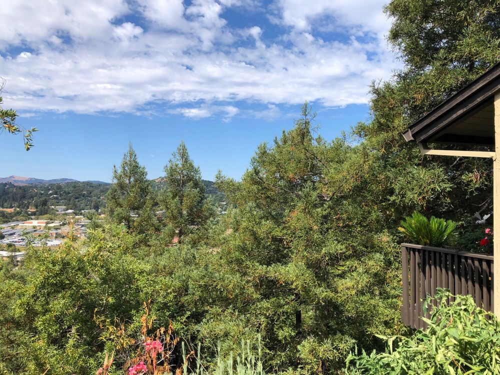 Skylark Heights Apartments: 14 Skylark Dr, Larkspur, CA