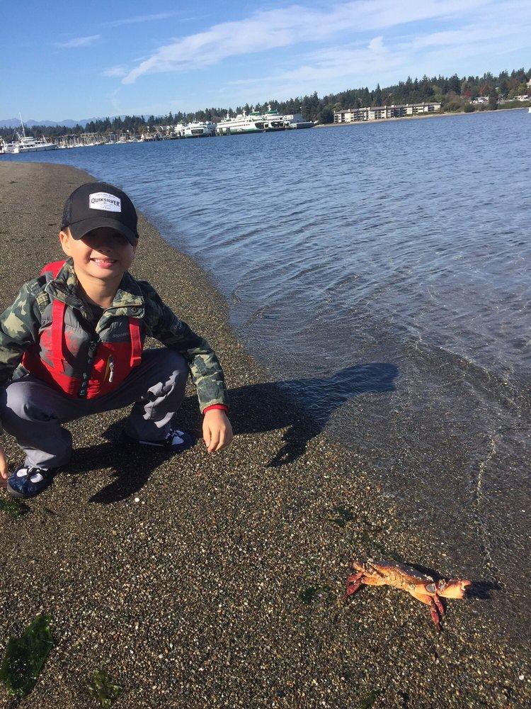 Exotic Aquatics Scuba & Kayaking: 328 Madison Ave N, Bainbridge Island, WA