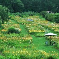 Photo Of Olallie Daylily Gardens   South Newfane, VT, United States. The  Garden ...