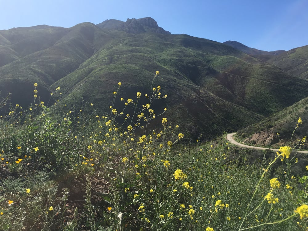 Take a Hike: Thousand Oaks, CA