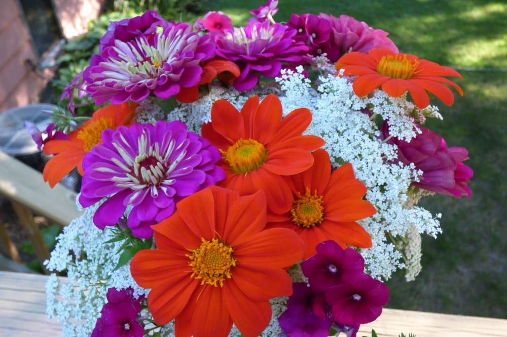 Live Flowers, LLC: St. Paul, MN