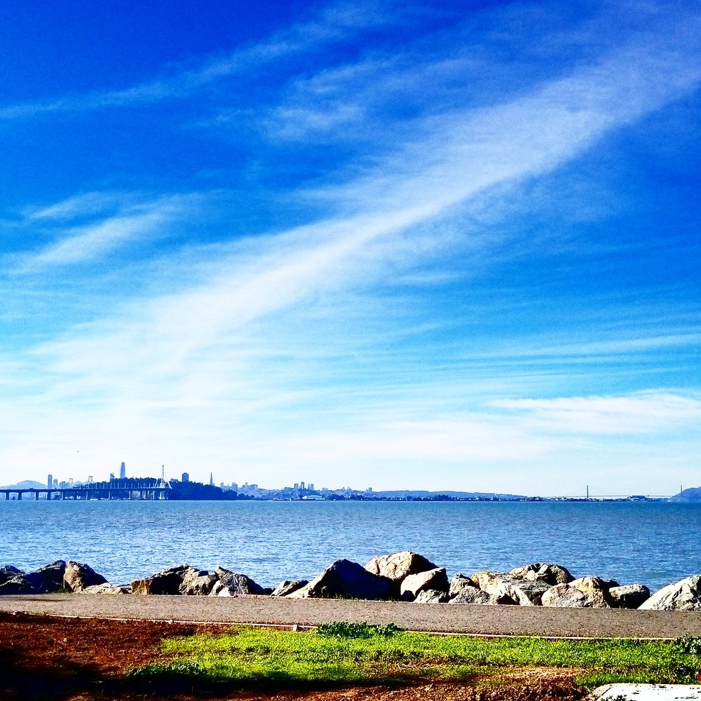Emeryville Marina - 111 Photos & 26 Reviews - Marinas - 3310 Powell
