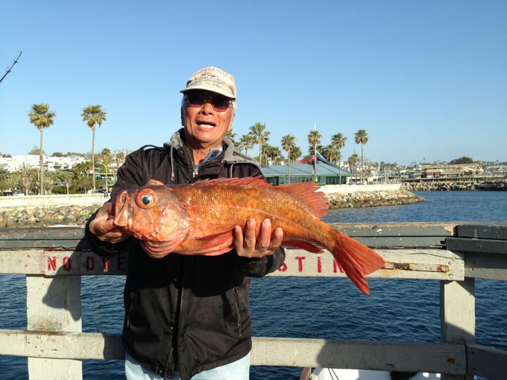 Big red on the redondo special yelp for Redondo beach fishing report
