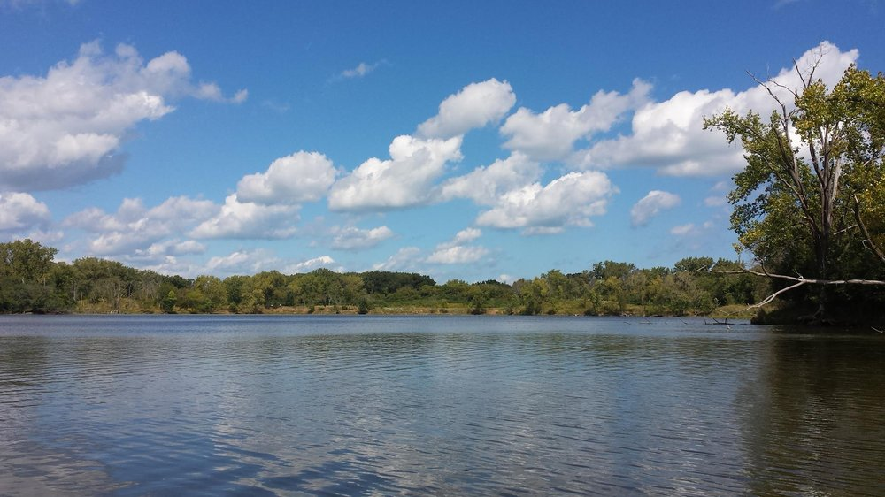 Forest Preserve
