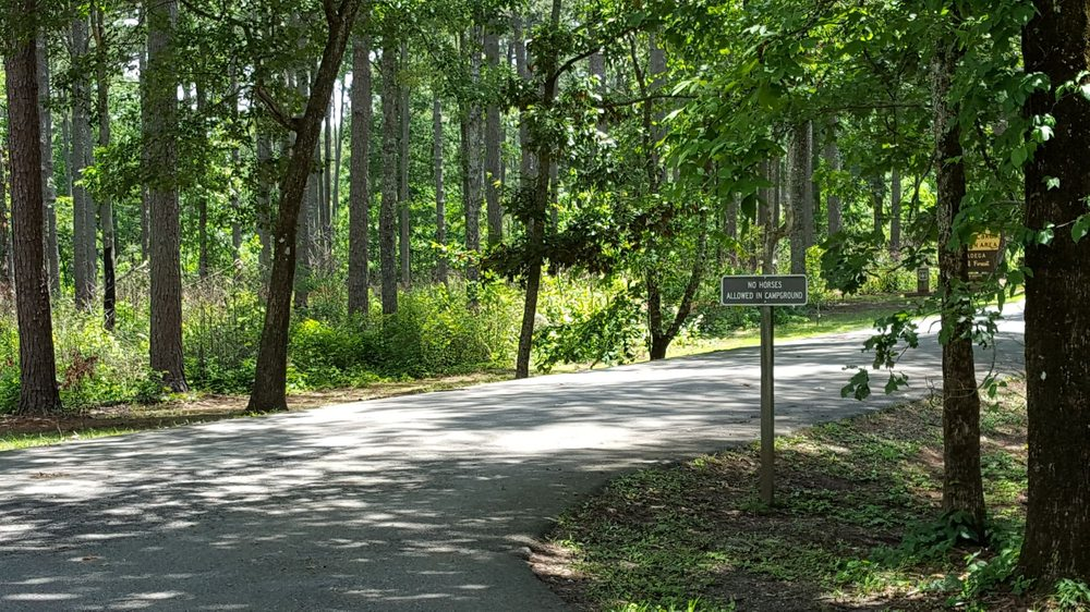 Talladega National Forest: Heflin, AL