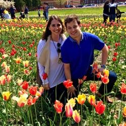 Holland Tulip Time Festival Photos Reviews Festivals - Holland tulip festival