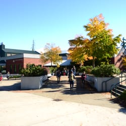 Pierce College Puyallup 17 Reviews Colleges Universities