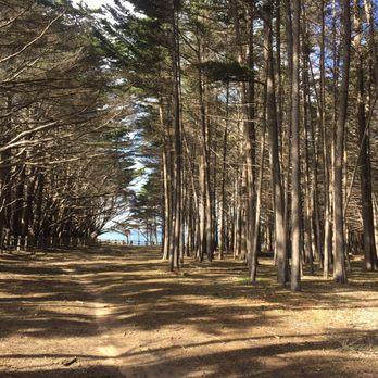 Photo Of Seal Cove Beach Moss Ca United States Walk To