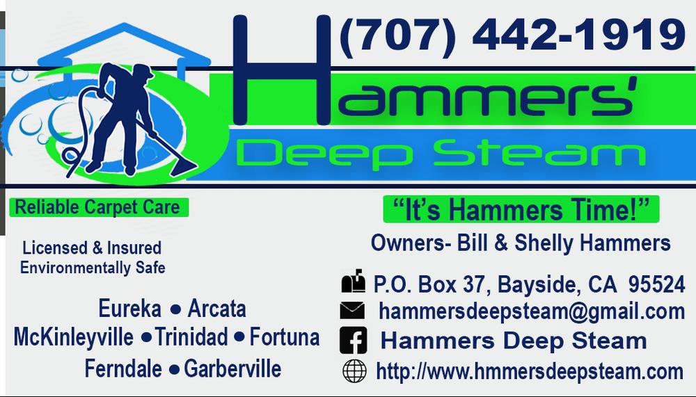 Hammers' Deep Steam Reliable Carpet Care: 70 Stephens Ln, Bayside, CA