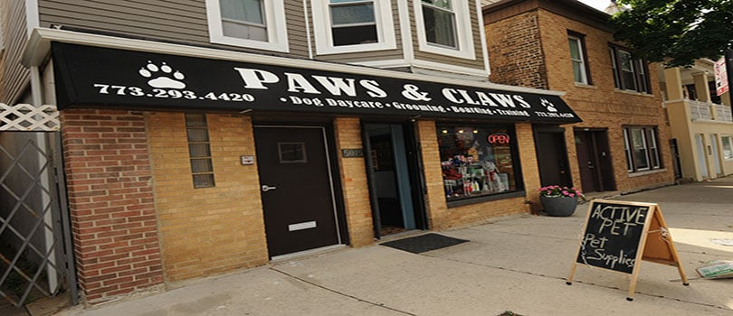 Paws & Claws at Lincoln Square