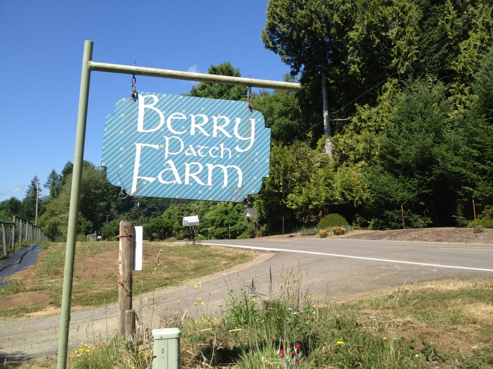 Blueberry Patch Farm: 89849 Greenwood Dr, Leaburg, OR