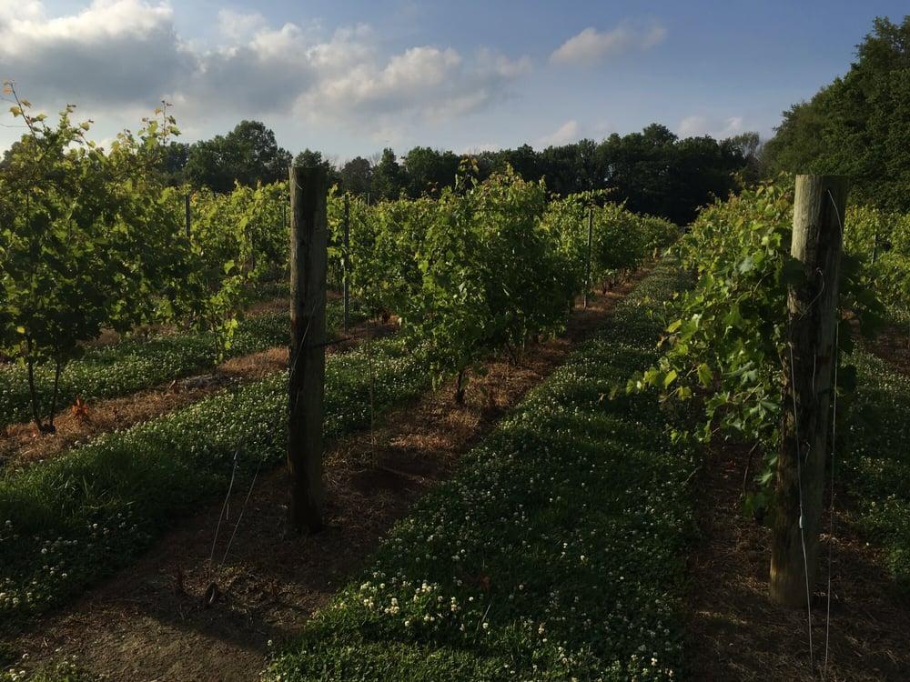 Harmony Hill Vineyards & Estate Winery: 2534 Swings Corner, Bethel, OH