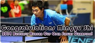 Atlanta International Table Tennis Academy: 4630 Valais Ct, Johns Creek, GA