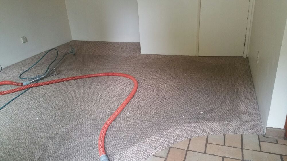 Wow!!another carpet saved by Berber Carpet Cleaning, but ...