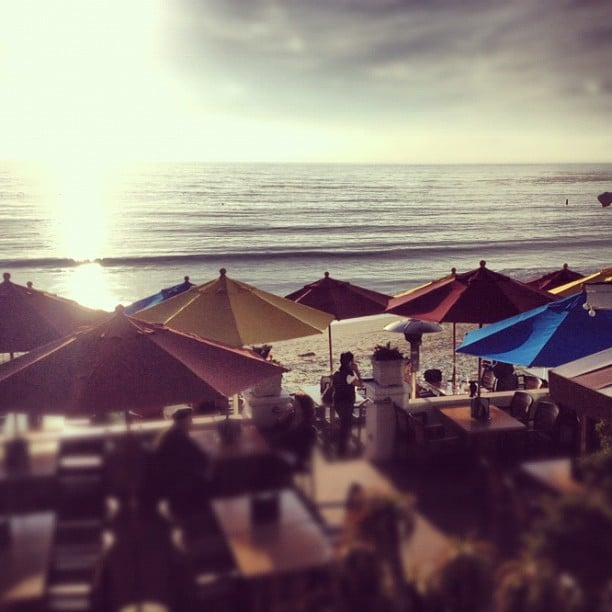 Oceanview Bar Grill Laguna Beach Ca