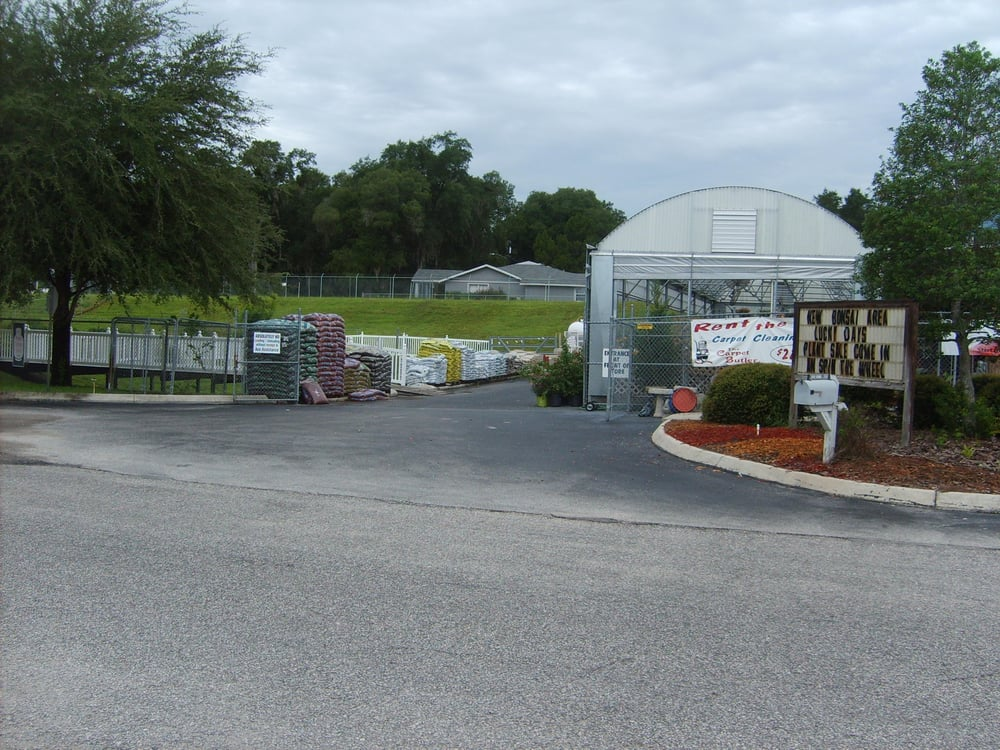 Ace garden center Yelp