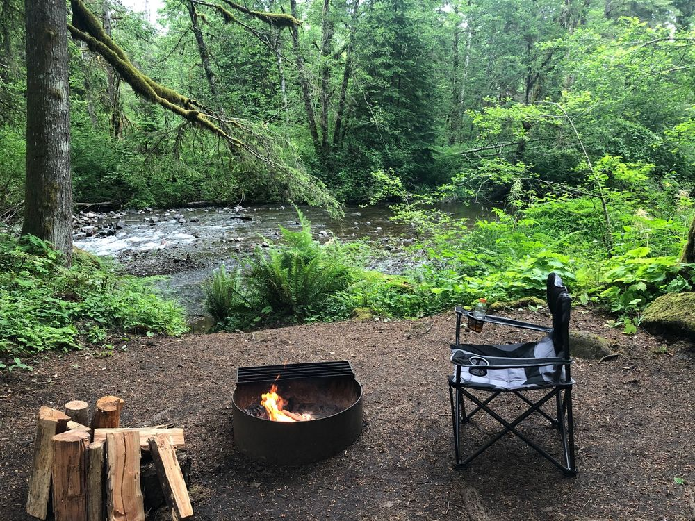 Big Creek Campground: Ashford, WA