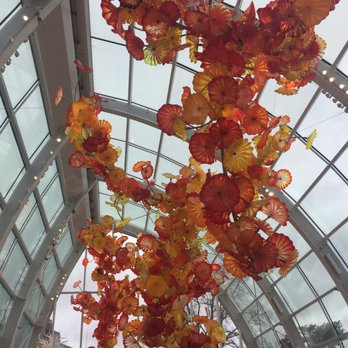 Chihuly garden and glass 10143 photos 1798 reviews - Chihuly garden and glass groupon ...
