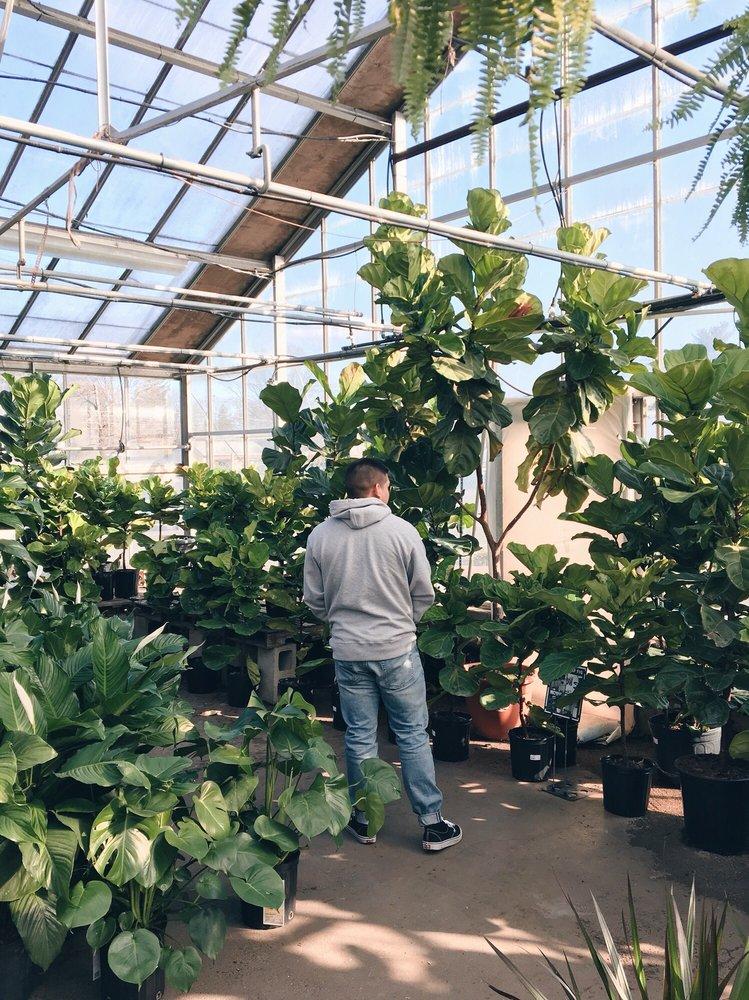 Mahoney S Garden Centers 27 Photos 65 Reviews Gardening Centres 242 Cambridge St