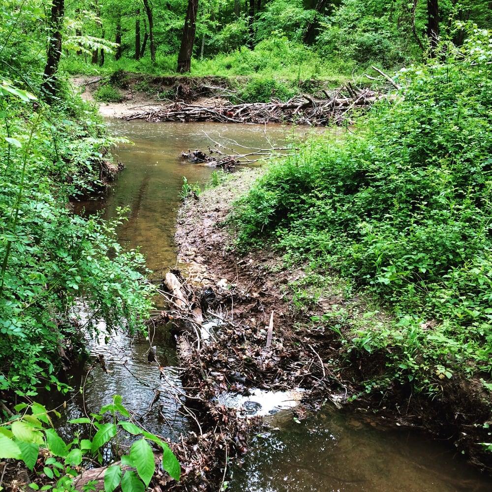 Nature trail yelp for Pond companies near me