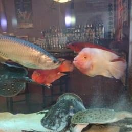 Sakana Japanese Restaurant - Nanuet, NY, United States