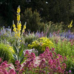 Photo Of Denver Botanic Gardens   Denver, CO, United States. Water Smart