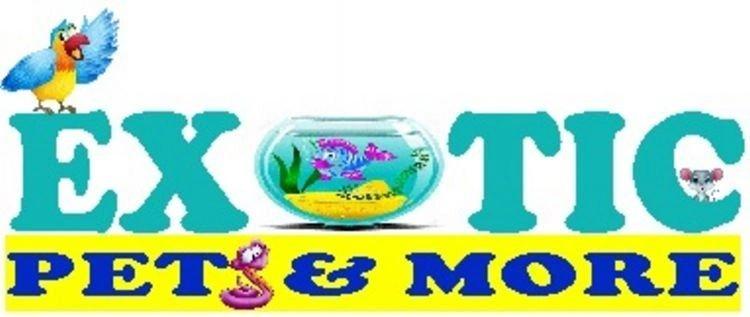 Exotic Pets & More: 113 S Parrott Ave, Okeechobee, FL