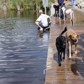 lake orion dog park