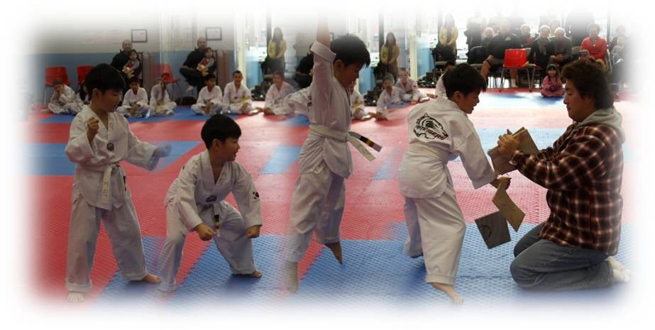K White Tigers Martial Arts: 20915 Ashburn Rd, Ashburn, VA