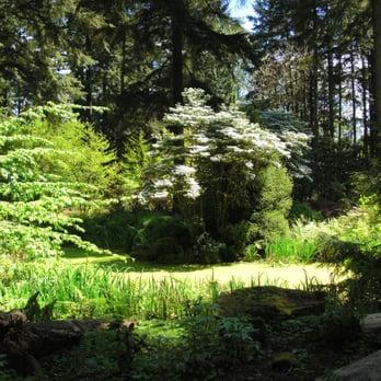 Attirant Photo Of Rhododendron Species Botanical Garden   Federal Way, WA, United  States. Quiet