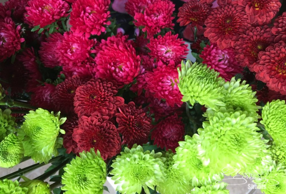 The Flower Shoppe Of Providence: 69A Town Center Dr, Huntsville, AL