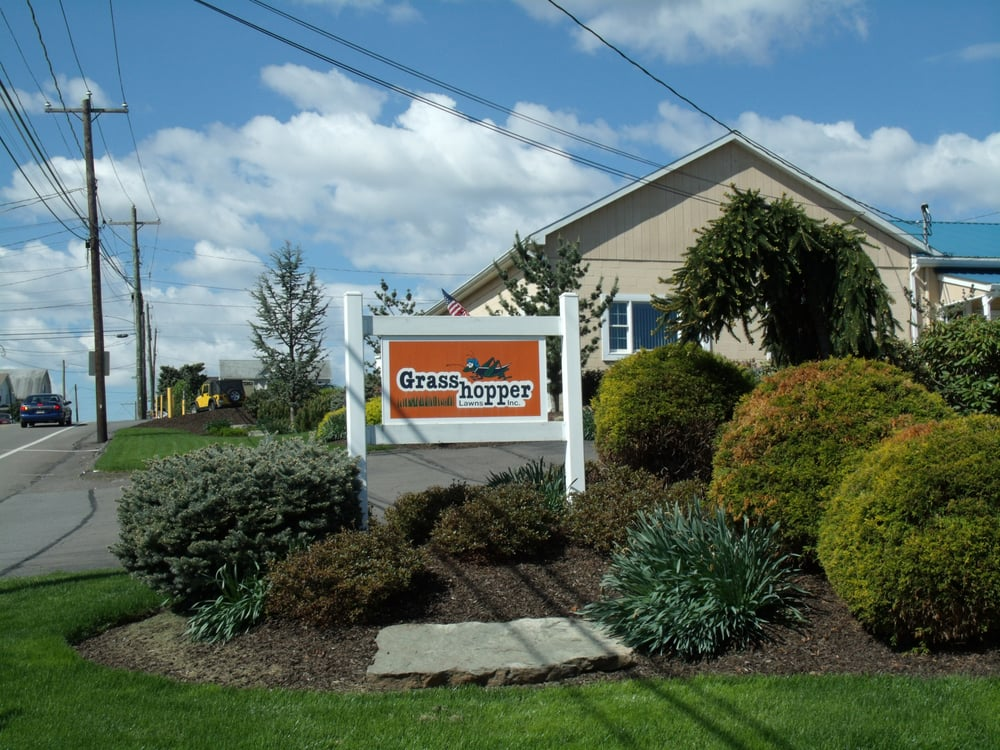 Grasshopper Lawns: 470 E State St, Larksville, PA