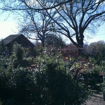 Superior Photo Of Waltonu0027s Lawn U0026 Garden Center   Dallas, TX, United States