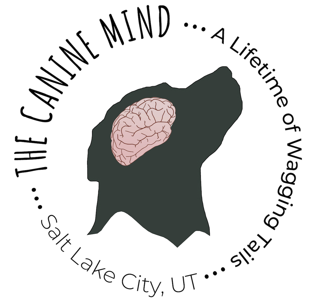 The Canine Mind: 1538 East 3300 S, Salt Lake City, UT
