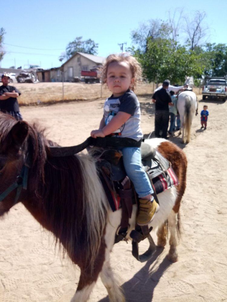Pony Party For You: 574 E Heather St, Rialto, CA