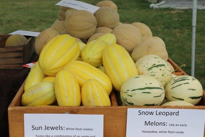 Photo of Richmond Farmers' Market: Richmond, RI