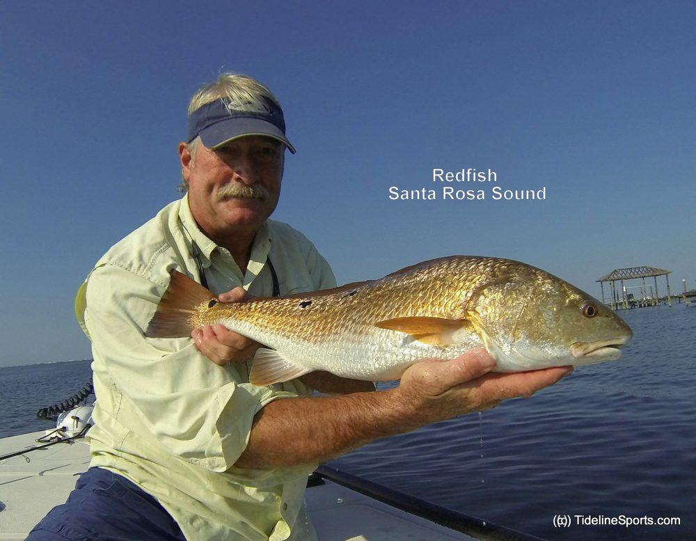 Tideline Sports: Pensacola, FL