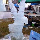 Plymouth Ice Festival 36 Photos Amp 19 Reviews Festivals