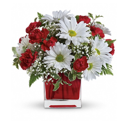 Red And White Delight Http://www.paliflorist.com/kailua