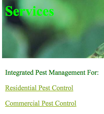 Green Planet Pest Control: 267 N Beacon St, Brighton, MA