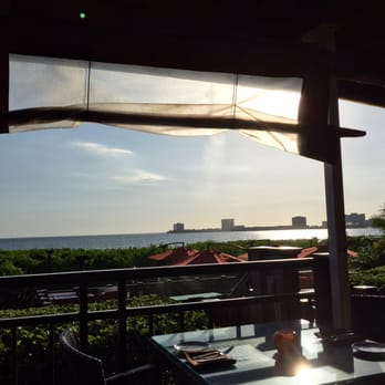 Photo Of Oystercatchers Tampa Fl United States View From The Patio
