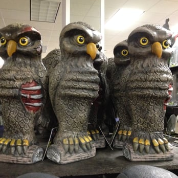 photo of spirit halloween store thousand oaks ca united states undead owl - Halloween Costumes Thousand Oaks