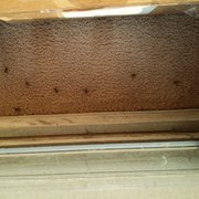 Sorry Out Photo Of Northridge Meadow Apartments Northville Mi United States All The Bees