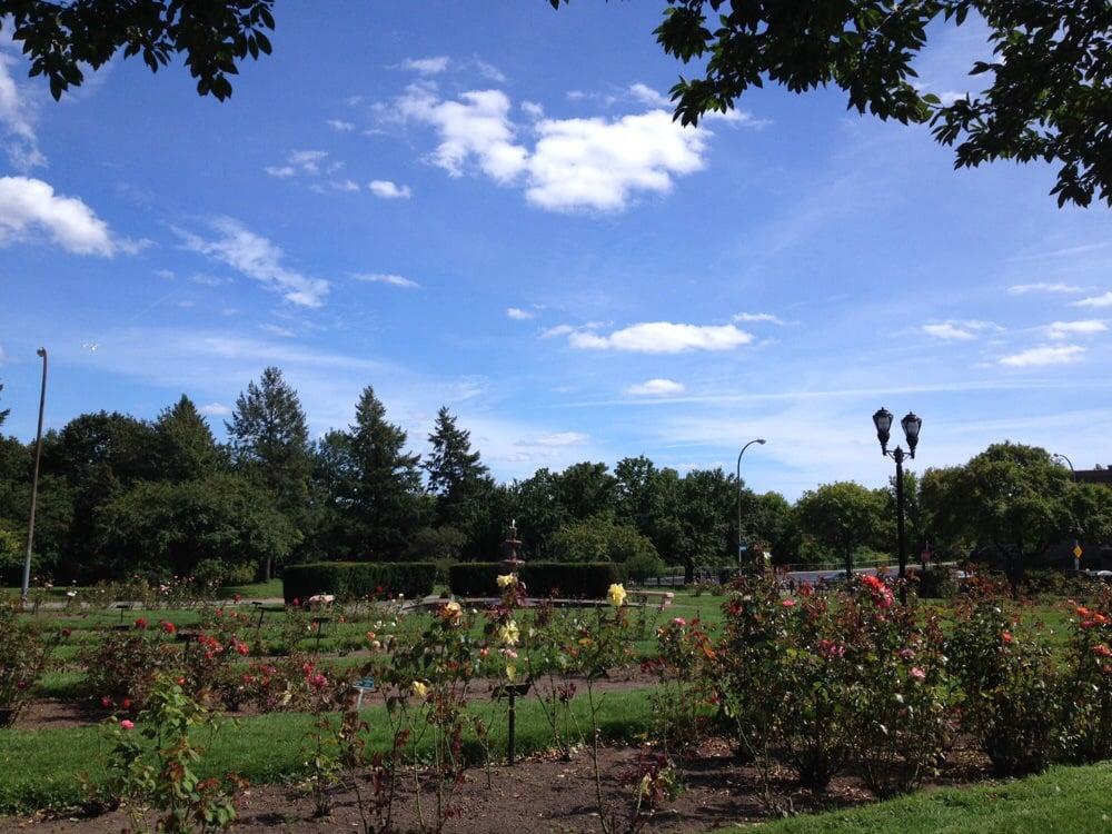 Maplewood Rose Garden 18 Photos Botanical Gardens 1 Maplewood Ave Maplewood Rochester