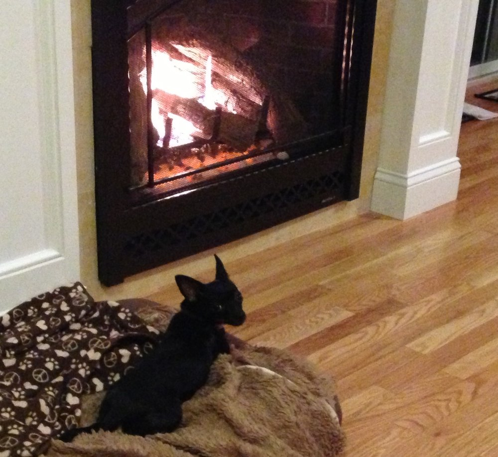 Fireplace Doesnt Heat: Heat&Glo 6000clx Gas Fireplace