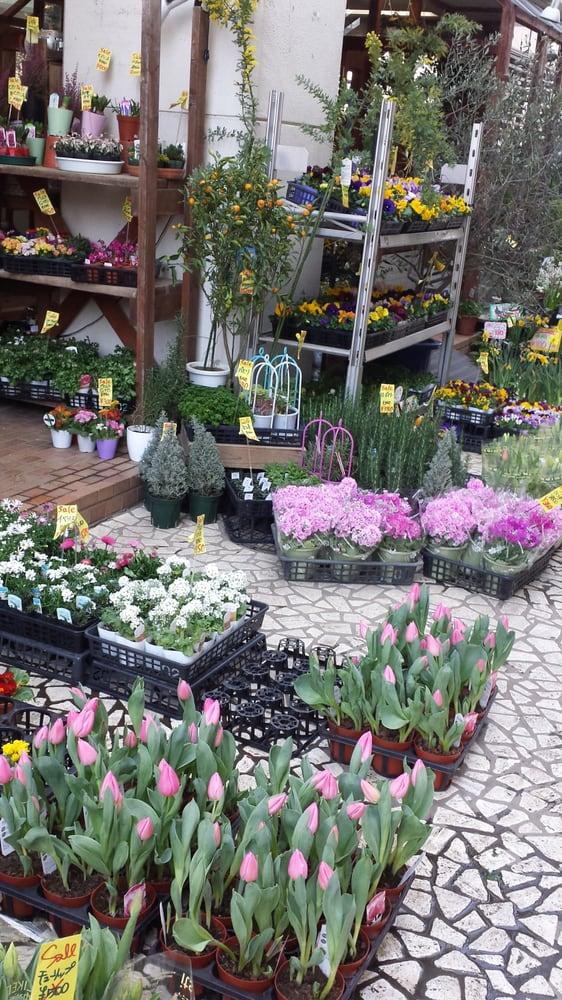 Flower Market Aoyama