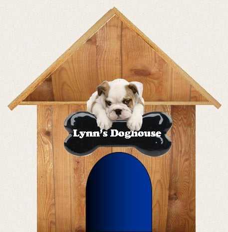 Lynn's Doghouse: 9880 Cleveland Ave NW, Uniontown, OH