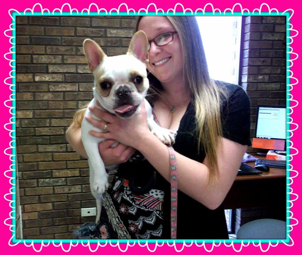 Tri-County Veterinary Service: 16200 County Rd 25A, Anna, OH