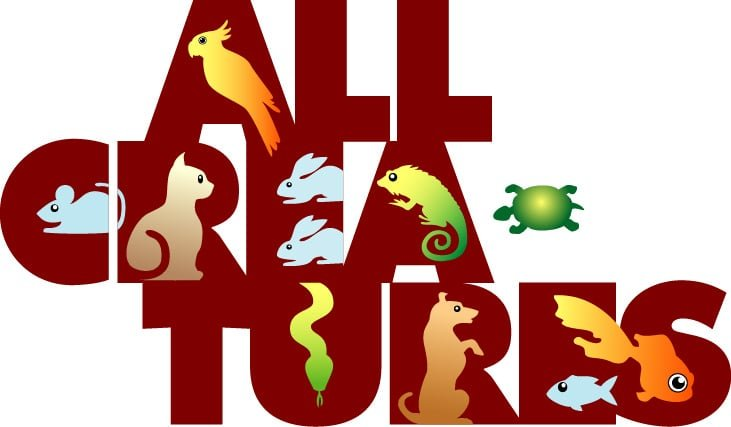 All Creatures Veterinary Hospital: 509 Benicia Rd, Vallejo, CA